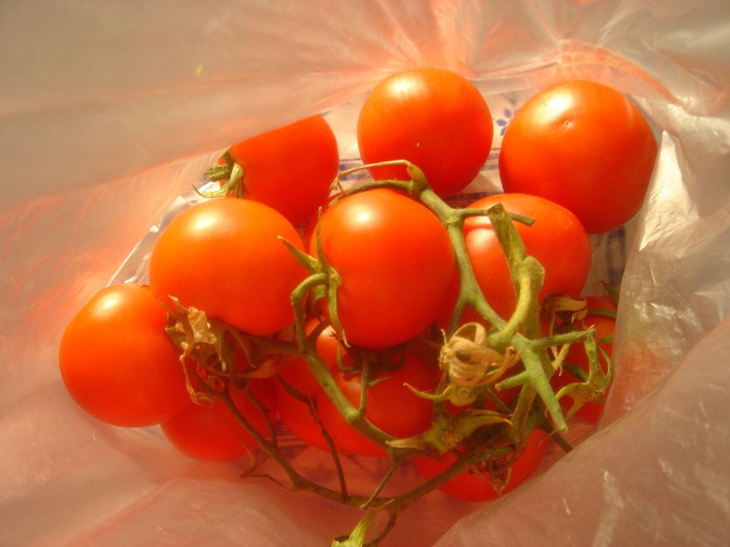 tomatobag